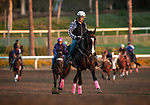 OCT 25: 2006 Breeders' Cup Classic runner Lava Man ponying horses for his trainer Doug O'Neill at Santa Anita Park in Arcadia, California on Oct 25, 2019. Evers/Eclipse Sportswire/Breeders' Cup
