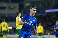 Joe Ralls of Cardiff City celebrates scoring his side's first goal from the penalty spot during the Sky Bet Championship match between Cardiff City and Norwich City at the Cardiff City Stadium, Cardiff, Wales on 1 December 2017. Photo by Mark  Hawkins / PRiME Media Images.