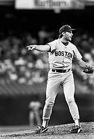 Boston Red Sox 1988
