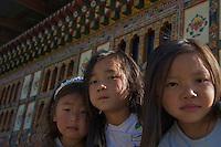 Traditional Village of Sopsokha, Punakha District, Bhutan