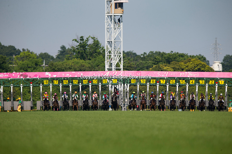 FUCHU,JAPAN-MAY 21: The Japanese Oaks starts at Tokyo Racecourse on May 21,2017 in Fuchu,Tokyo,Japan (Photo by Kaz Ishida/Eclipse Sportswire/Getty Images)