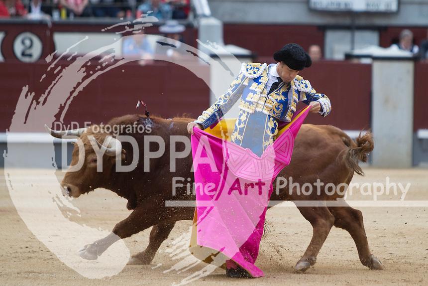 Bullfighter Escribano