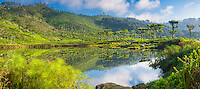 Panoramic photo of a lake at Haputale, Nuwara Eliya District, Sri Lanka Hill Country, Asia. This is a panoramic photo of a beautiful lake at Haputale in the Nuwara Eliya District of the Sri Lanka Hill Country, Asia.