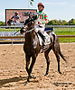 Momma's Happy winning at Delaware Park on 9/25/13