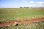 Farming landscape, Texel island, Netherlands