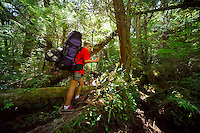 Nootka Island, British Columbia, Canada, August 2006. At High tide hikers have to continue their trek through the forest. Trekking the Nootka trail takes hikers through dense rainforest and along beaches full of marine life. Photo by Frits Meyst/Adventure4ever.com.
