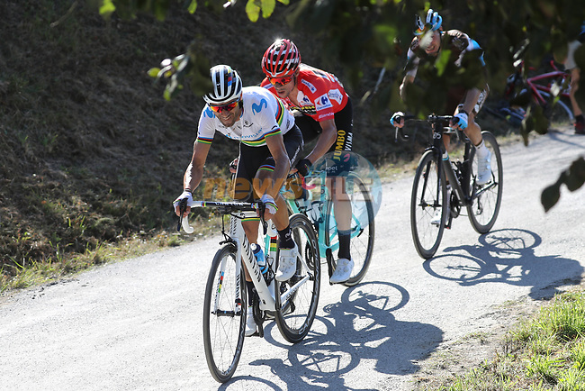 World Champion Alejandro Valverde (ESP) and race leader Red Jersey Primoz Roglic work together on the final climb during Stage 15 of La Vuelta 2019  running 154.4km from Tineo to Santuario del Acebo, Spain. 8th September 2019.<br /> Picture: Luis Angel Gomez/Photogomezsport | Cyclefile<br /> <br /> All photos usage must carry mandatory copyright credit (© Cyclefile | Luis Angel Gomez/Photogomezsport)