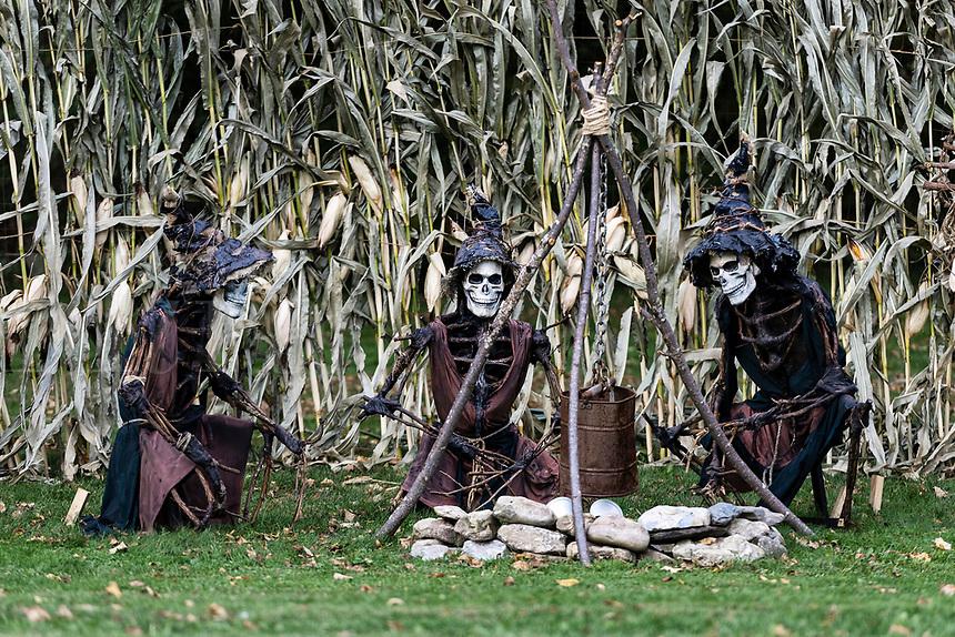 Three skeleton zombies enjoy a holloween campfire.
