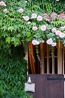 A 'Pierre de Ronsard' (Rosa) grows over the entrance to the house which has a stable door