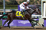 November 2, 2019: Mitole, ridden by Ricardo Santana Jr., wins the Breeders' Cup Sprint on Breeders' Cup World Championship Saturday at Santa Anita Park on November 2, 2019: in Arcadia, California. Casey Phillips/Eclipse Sportswire/CSM