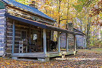 63895-16419 Cabin at Log Cabin Village in fall Kinmundy IL