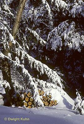 WT09-011z  Weather - snow