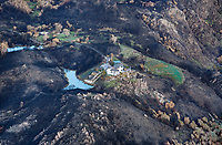 A mountain vineyard home survives the Atlas Fire, Napa County, California, northern California wildfires, 2017. The vineyard and pond served as firebreaks that helped preserve the house.