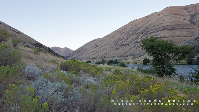 The Deschutes River at dawn below Macks Canyon.
