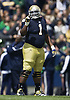 Notre Dame Football 2013 Blue-Gold