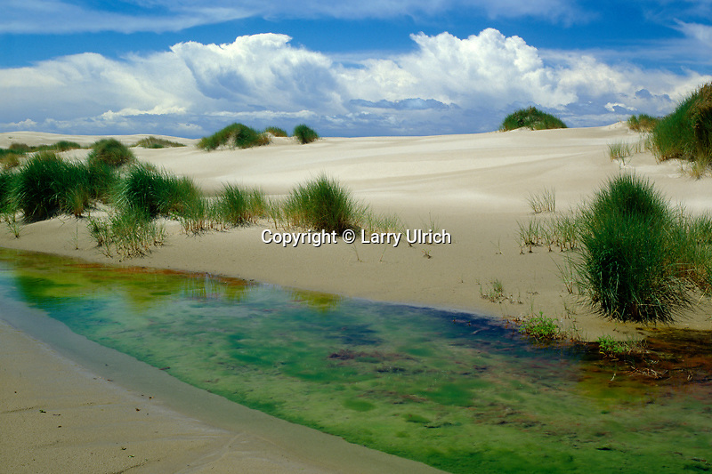 Creek through dunes<br />