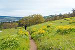 Rosier, Oregon
