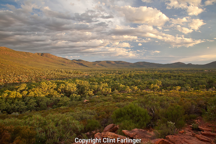 ABC Range above Wilpena Pound (Ikara), Flinder Ranges National Park, South Australia, Australia