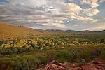 ABC Range above Wilpena Pound (Ikara), Flinder Ranges National Park, South Australia, Australia