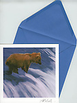 Bear in waterfall<br />