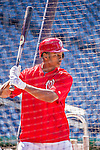 22 May 2015: Washington Nationals outfielder Michael Taylor stands ready in the batting cage prior to a game against the Philadelphia Phillies at Nationals Park in Washington, DC. The Nationals defeated the Phillies 2-1 in the first game of their 3-game weekend series. Mandatory Credit: Ed Wolfstein Photo *** RAW (NEF) Image File Available ***