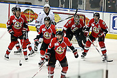 February 22nd 2008:  Brian Elliot (1) of the Binghamton Senators looks through traffic during a game vs. the Rochester Amerks surrounded by Geoff Waugh (4), Yannick Tifu (16), Tyler Donati (10), Ilya Zubov (36), and Greg Amadio (19) look for the puck at Blue Cross Arena at the War Memorial in Rochester, NY.  The Senators defeated the Amerks 4-0.   Photo copyright Mike Janes Photography