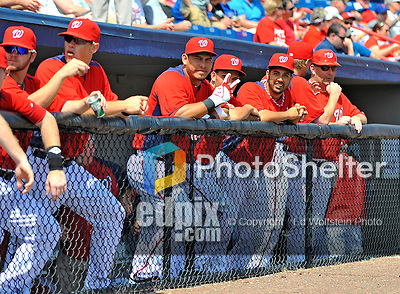 10 March 2012: Washington Nationals await the start of play in the dugout prior to a Spring Training game against the New York Mets at Space Coast Stadium in Viera, Florida. The Nationals defeated the Mets 8-2 in Grapefruit League play. Mandatory Credit: Ed Wolfstein Photo