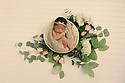 Aviana Z. Newborn Session