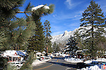 North Circle Drive in Idyllwild after December snowstorm