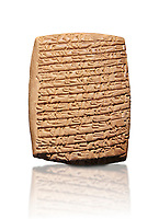 Hittite cuneiform tablet. Adana Archaeology Museum, Turkey. Against a white background