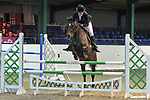 21/01/2018 - Class 3 - British Showjumping seniors - Brook Farm training centre