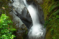 Dawson Stream and volcanic rock, Mount Egmont National Park, Taranaki Region, North Island, New ZEaland, NZ