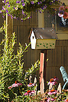 Debra Parry garden, S. Williamsport, PA, Wren birdhouse in garden setting.