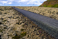 Iceland, Reykjanes. Lava field covered by moss.