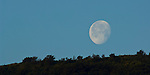 Moon setting over ridge, near Ojai, California