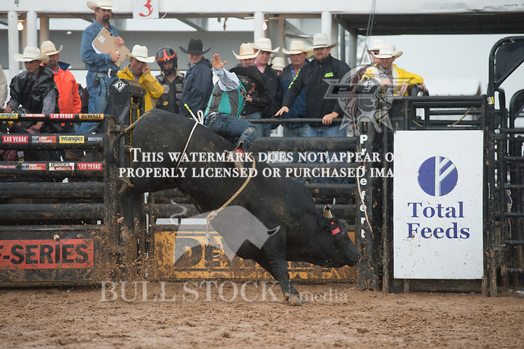 Big Black of Robison/ Haworth during the American Bucking Bull, Incorporated event in Decatur, TX - 6.3.2017. Photo by Christopher Thompson