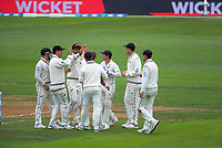 The Black Caps celebrate a wicket on day three of the international cricket match between NZ Black Caps and Bangladesh at the Basin Reserve in Wellington, New Zealand on Sunday, 10 March 2019. Photo: Dave Lintott / lintottphoto.co.nz