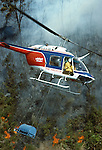Bell Jet Ranger Helicopter lighting fires to burn off scrub near Rotorua Bay of Plenty New Zealand.