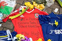 Emiliano Sala Tribute Cardiff Stadium - 08.02.2019