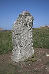 Standing stone Skomer Island, Pembrokeshire, Wales