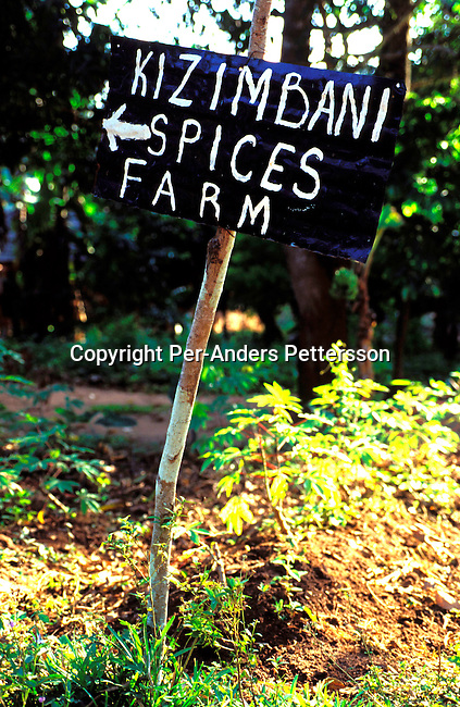 dicotanz00058 .Tanzania. A sign pointing to a spice farm on October 7, 2002 in rural  Zanzibar, Tanzania. Zanzibar has become a popular tourist destination due to the beautiful virgin beaches and influence of Arabic, Indian and African cultures on the Island. Many spices are grown on Zanzibar it' usually called Spice Island..©Per-Anders Pettersson/iAfrika Photos.