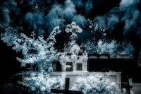infrarred