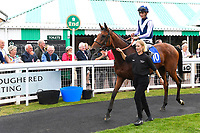 Winner of The Bob McCreery Memorial EBF Quidhampton Maiden Fillies' Stakes Manuela De Vaga  ridden by Harry Bentley and trained by Ralph Beckett  is led into the winners enclosure during the Bathwick Tyres & EBF Race Day at Salisbury Racecourse on 6th September 2018