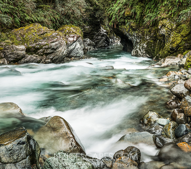 Wild river and gorge near Haast, West Coast, South Westland, UNESCO World Heritage Area, New Zealand, NZ