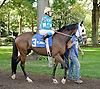 Filare l'Oro before The Christiana Stakes at Delaware Park 9/15/12