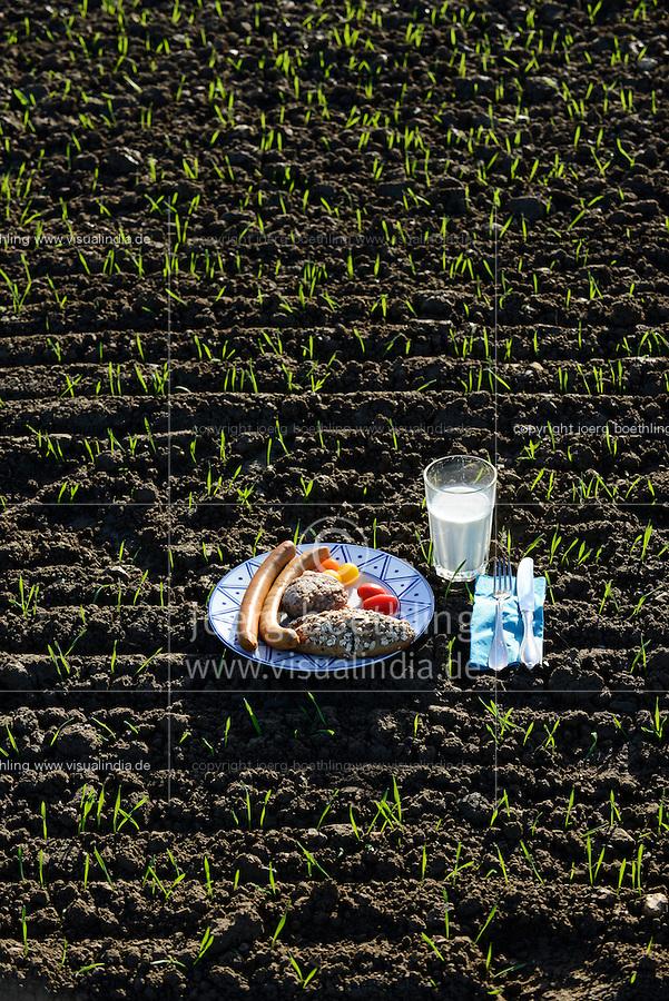 Germany, plate with german food on field / DEUTSCHLAND Teller mit deutschem Essen auf dem Feld