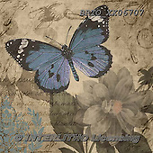 Alfredo, STILL LIFE STILLLEBEN, NATURALEZA MORTA, paintings+++++,BRTOXX06707,#i# ,butterflies ,butterfly