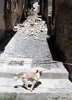 Un cane osserva le macerie a Paganica, nei pressi dell'Aquila, 8 giugno 2009, poco piu' di due mesi dopo il sisma che ha sconvolto l'Abruzzo..A dog walks past rubble and collapsed building in Paganica, near L'Aquila, 8 june 2009, about 2 months after the earthquake that hit the Abruzzo region in central Italy..UPDATE IMAGES PRESS/Riccardo De Luca