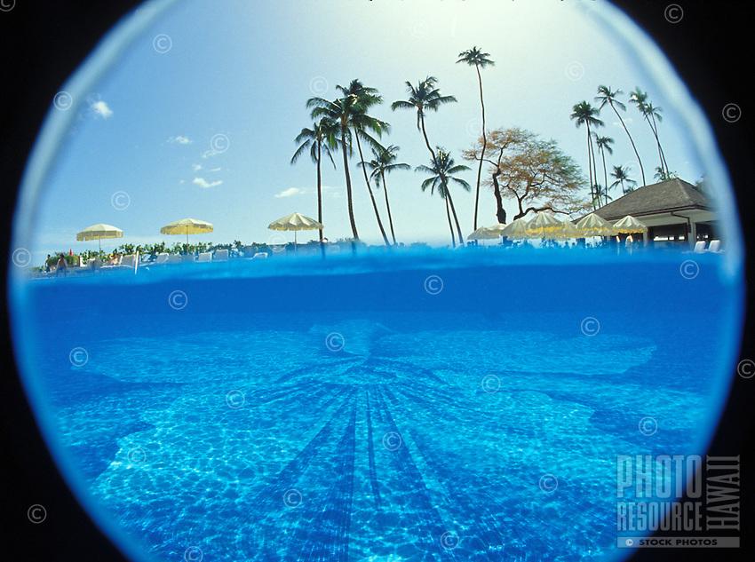 Halekulani hotel pool underwater with palm trees above water