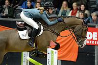ZUIDBROEK - Paardensport, ICCH Zuidbroek, springen internationaal 1.40 klassiek, 03-01-2019, Marleen Bonder met El Quando